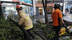 Tajfun Lingling uderzył w Półwysep Koreański. Nie żyje co najmniej osiem osób