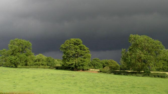 Prognoza pogody na dziś: lokalne burze, do 25 stopni