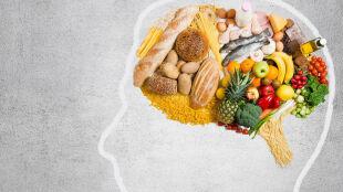 Zachodnia dieta osłabia i uszkadza mózg