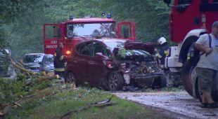 Konar spadł na samochody w województwie dolnośląskim